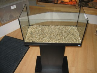 Aquarium With Gravel