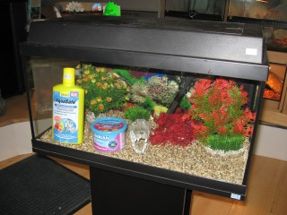 Fitting An Aquarium Hood